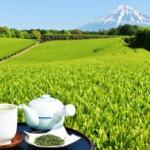2021最新!静岡のおすすめ不用品回収業者7社【厳選】